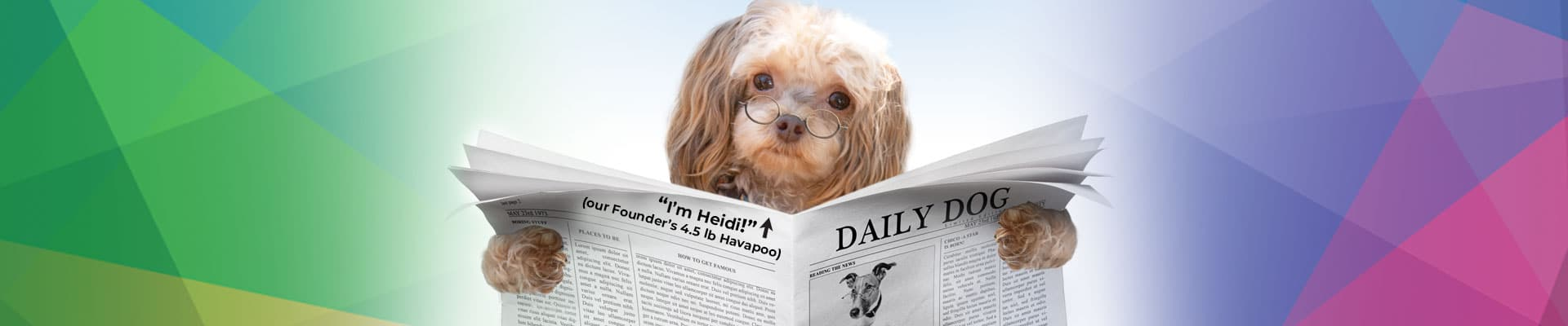 Kaleidoscope News Header with our founder's dog, Heidi, holding newspaper
